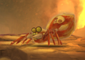 File:Fire Spider.png
