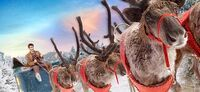 Doctor-who-christmas-tv-idents
