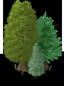 Pine Tree-SE