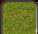 Grassland (Civ4Col)