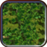 Jungle (Civ4Col)