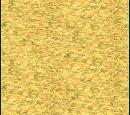 Plains (Civ3)