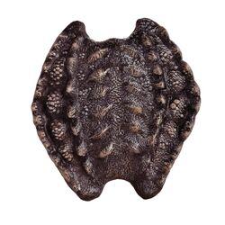 Scorpion Shield