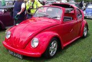 Targa beetle