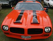 Red Firebird