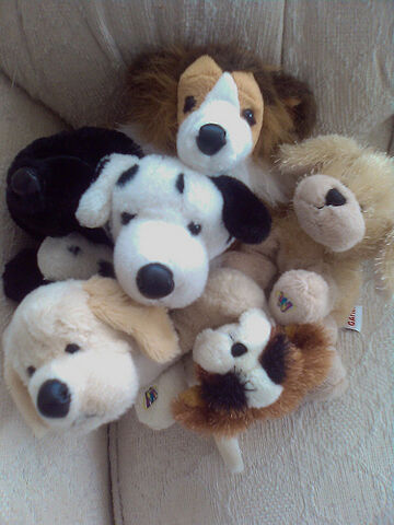 File:A cuddle of webkinz.jpg