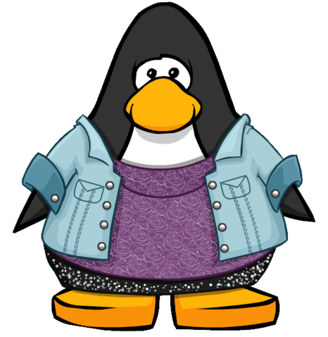 File:Hi-lo Outfit from a Player Card.PNG