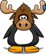 Zeus The Moose Head on Player Card