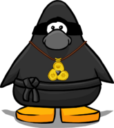 NinjaWithAmuletPlayerCard.png