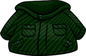 Green Winter Jacket icon