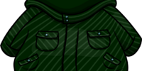 Green Winter Jacket