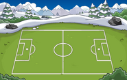 Soccer Pitch Location