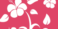 Pink Hawaiian Background