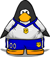 Clothing Item 4349 player card