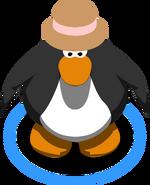 Brown Fedora112233