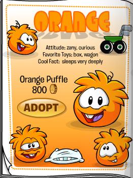 File:OrangePuffleCatalog.png