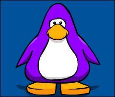 File:Maroon Penguin Player Card.JPG