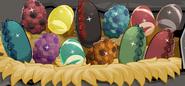 Full nest of eggs