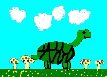 File:Turtle and Mushrooms.JPG