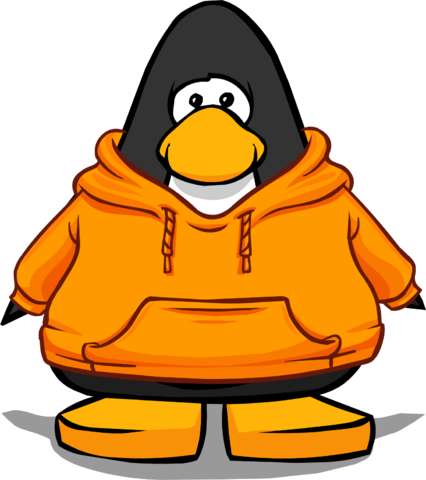 File:Zanyhoodie.png