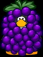 GrapeBunchPC