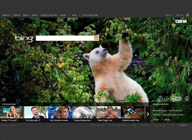 File:Herbert on Bing.jpg