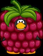 RaspberryCostume