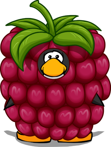 File:RaspberryCostume.png