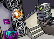 Orangepufflepin