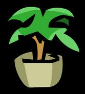 PlantPinGary'sRoom