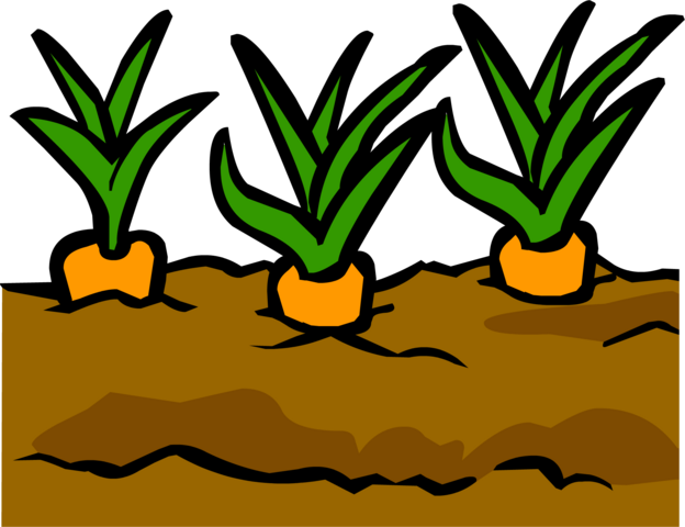 File:Garden.png