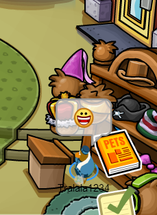 File:Me workin at the puffle hotel!!.png