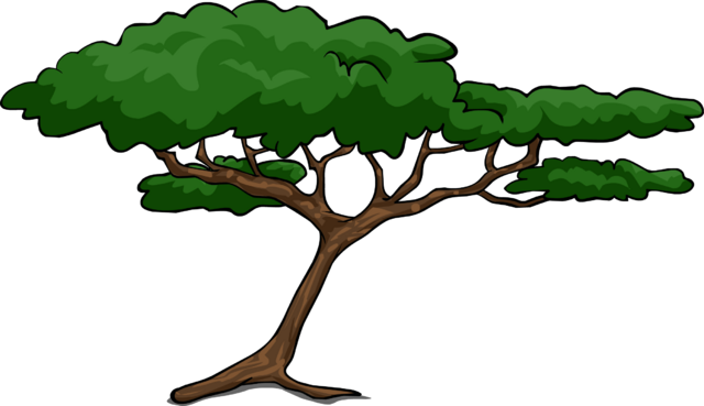 File:Acacia Tree.png