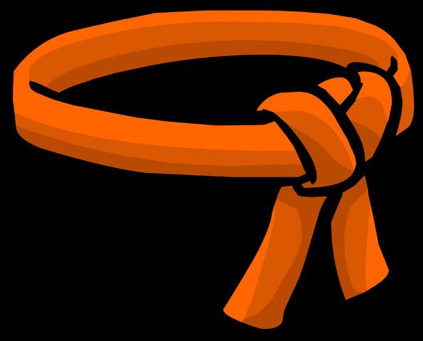 File:Orange Ninja Belt icon.png