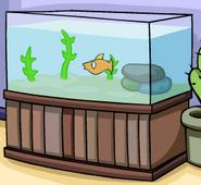 Gary's Aquarium