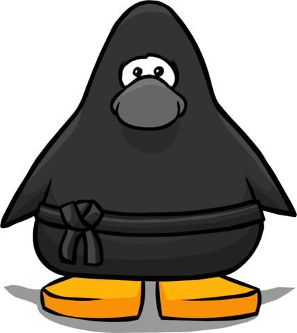 File:Ninja Outfit PC.png