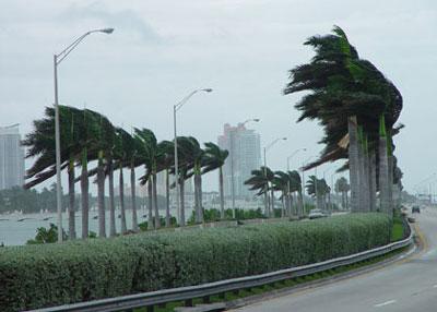 File:Florida.jpg