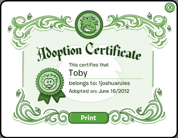 File:TobyCertificate.png