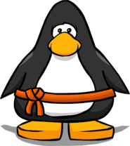 Orange Belt from a Player Card