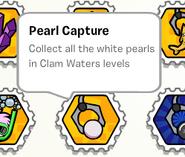 Pearl capture stamp book