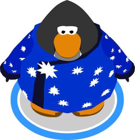 File:Blizzard Wizard Robe ingame.PNG