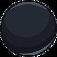 Black2013