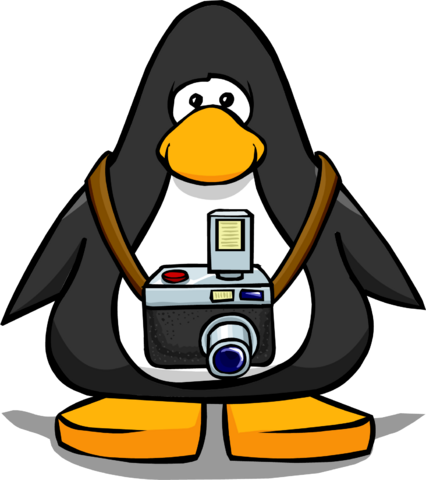 File:Camera from a Player Card.PNG