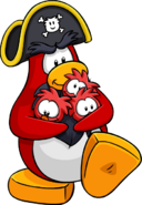 Rockhopper Three Yarrs