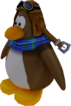 Sled Racer Penguin Model Brown