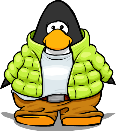 File:Toboggan Suit on Player Card.png