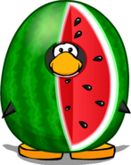 Watermelon Costume PC
