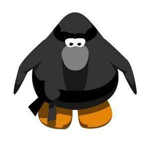 File:CP Ninja.JPEG