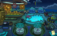 Operation Puffle Puffle Hotel Roof