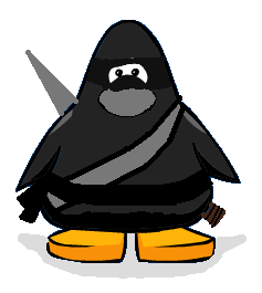 File:The Ninja.png